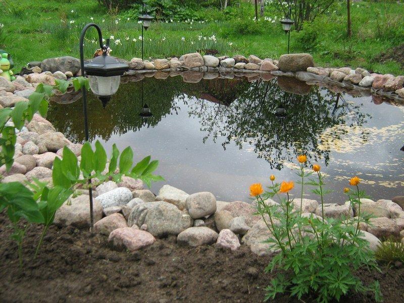 Как сделать пруд на своем участке своими
