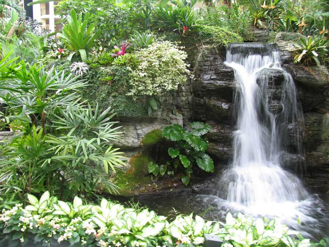 Фото пруд с водопадом на даче
